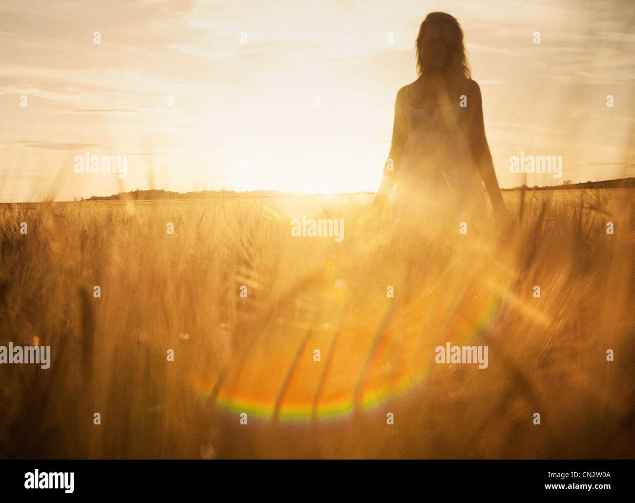 Mujer joven en el campo de la cebada Foto de stock