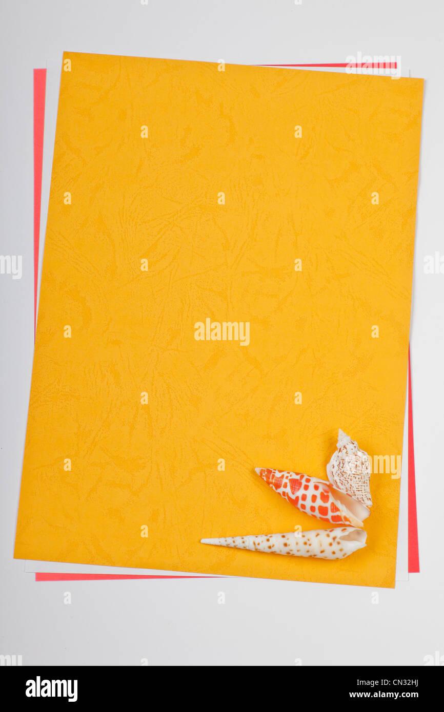 Hoja de papel con conchas en esquina Imagen De Stock