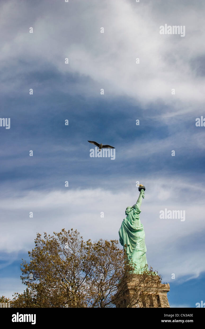 Pájaro volando sobre la Estatua de la Libertad, Nueva York Imagen De Stock