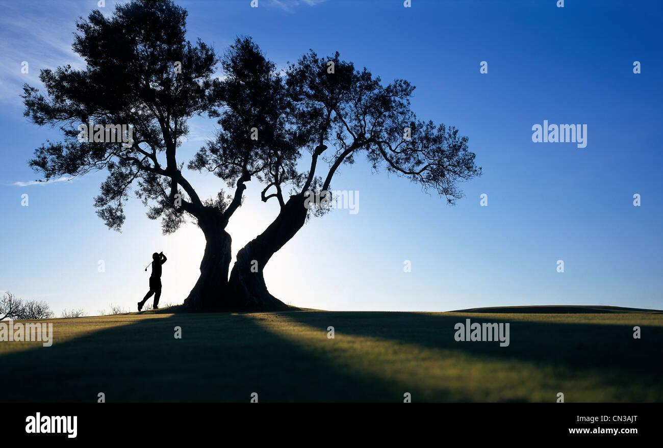 Persona jugando al golf bajo el árbol Imagen De Stock