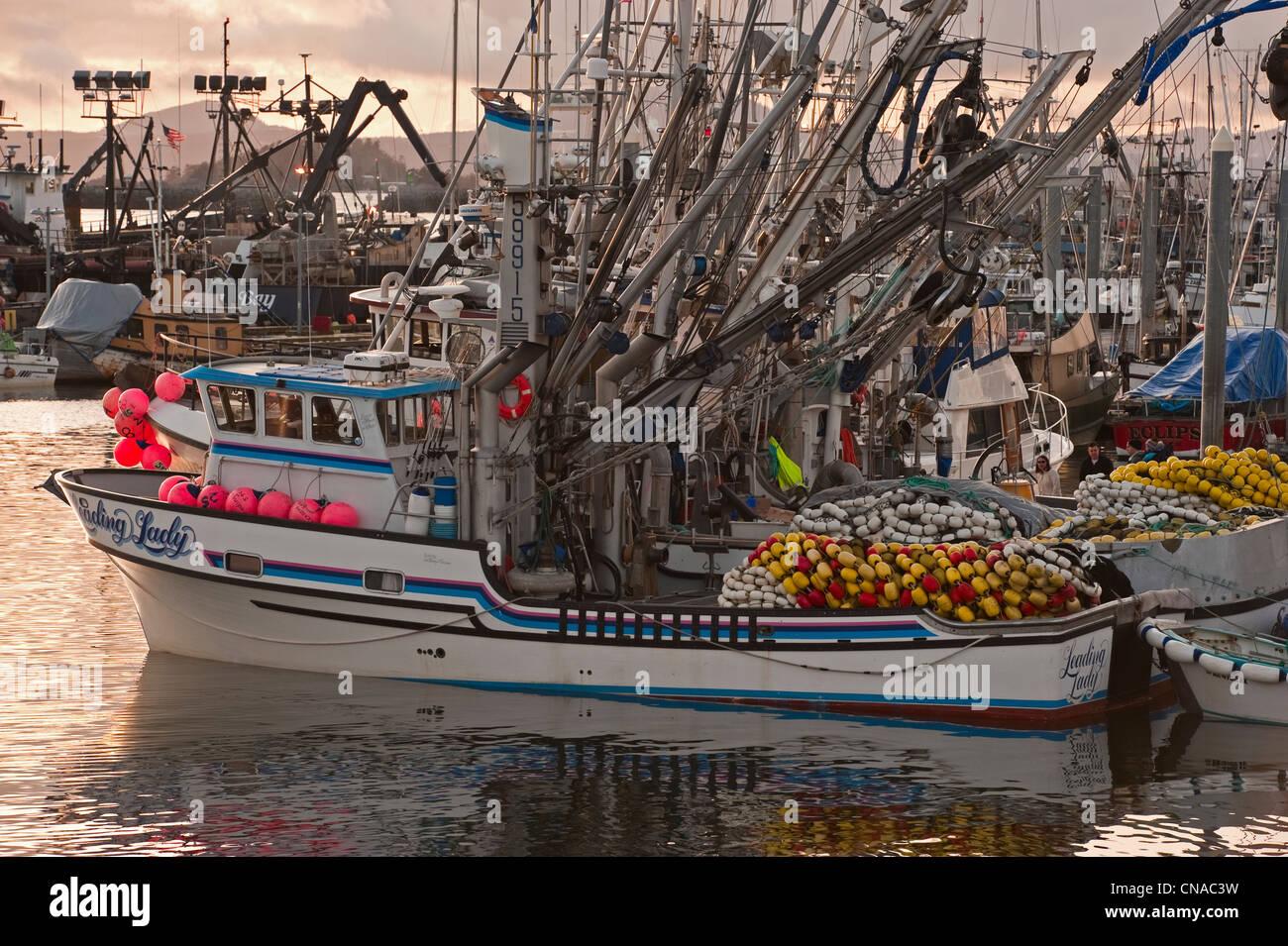 Sac huevas de arenque acoplado en la flota pesquera Thomsen Harbour en Sitka, Alaska, EE.UU. Imagen De Stock