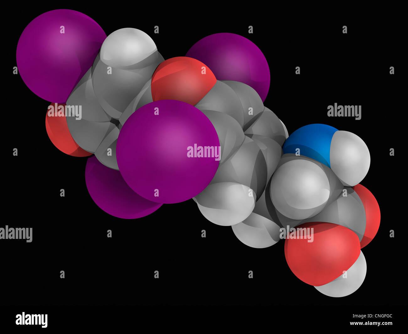 Levothyroxine drug molécula Imagen De Stock
