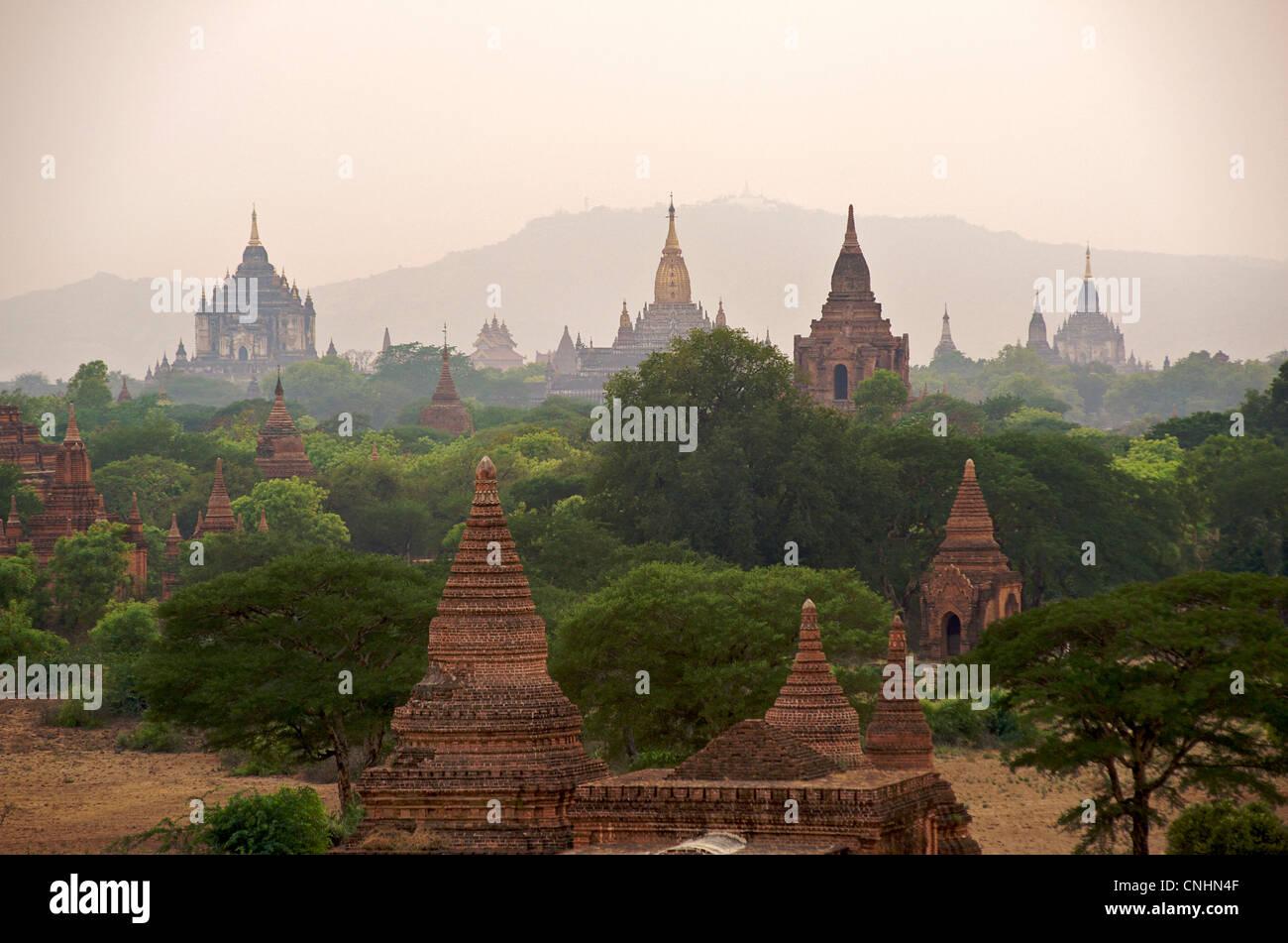 Ver a través de la llanura de Bagan con la aguja dorada de la pagoda Ananda Center. Birmania. Stupas antiguas Imagen De Stock