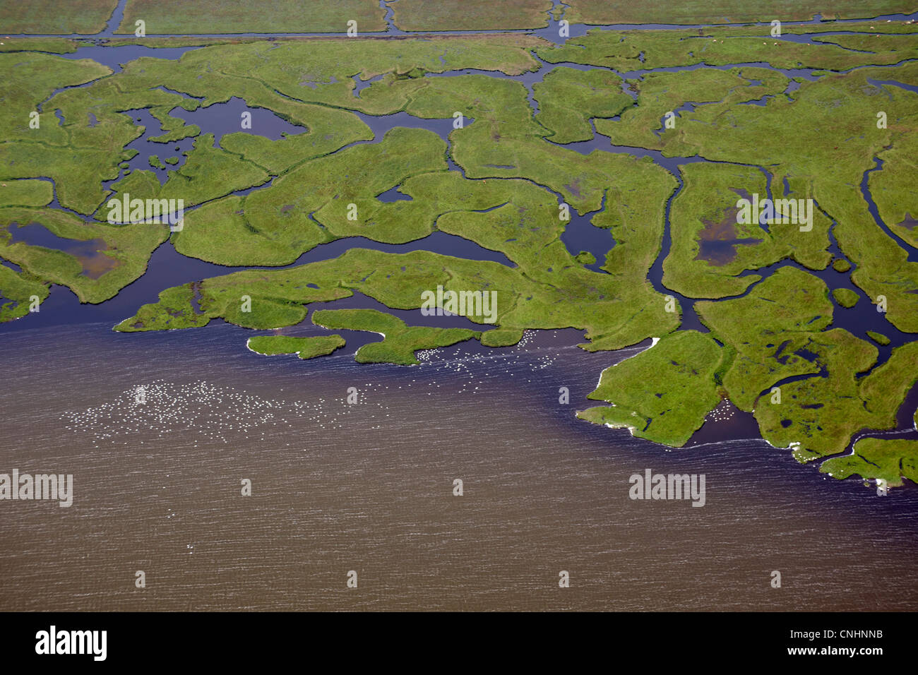 Varios ríos que desembocan en un cuerpo de agua, vista aérea Imagen De Stock