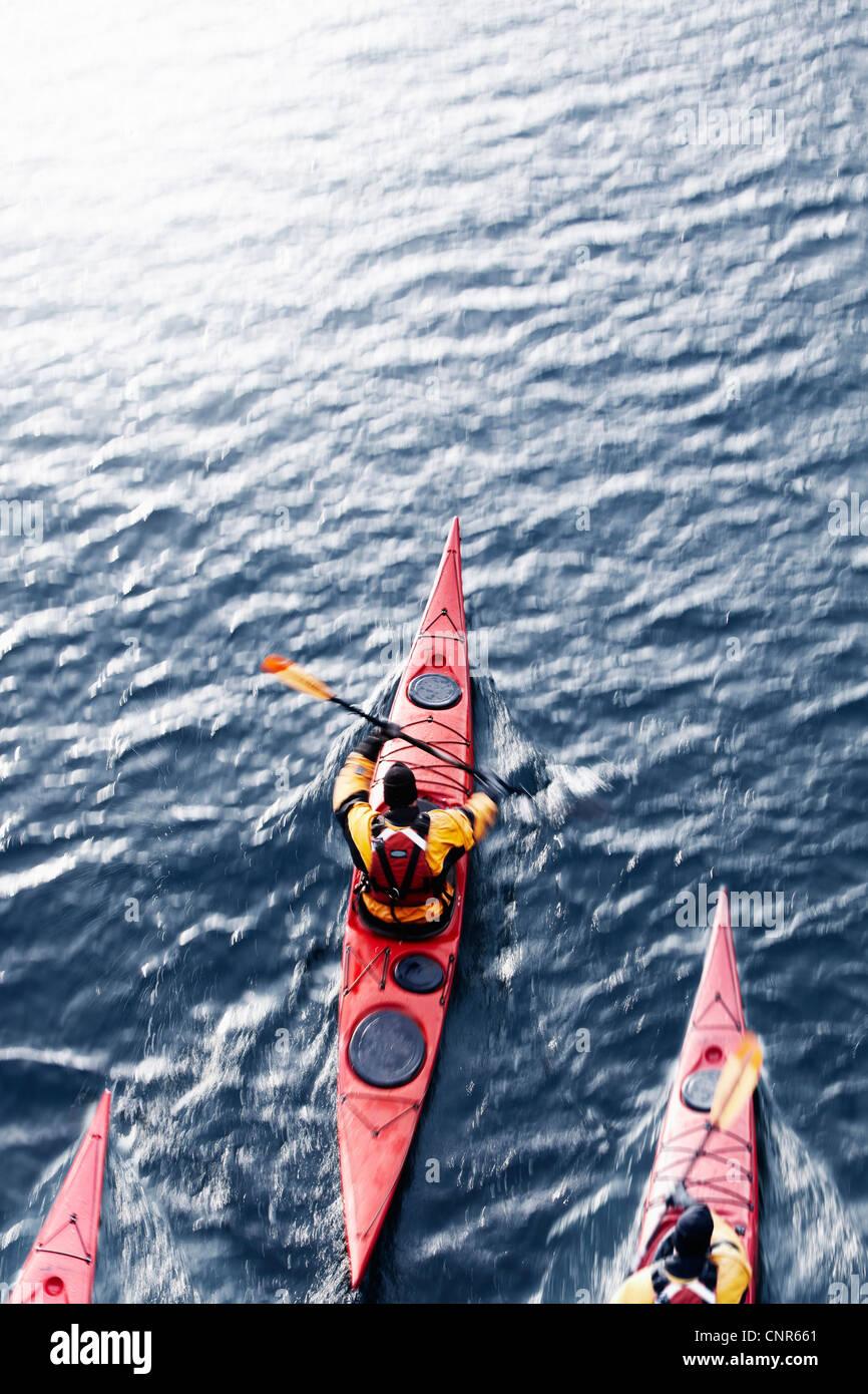 Vista aérea de los palistas en el agua Foto de stock