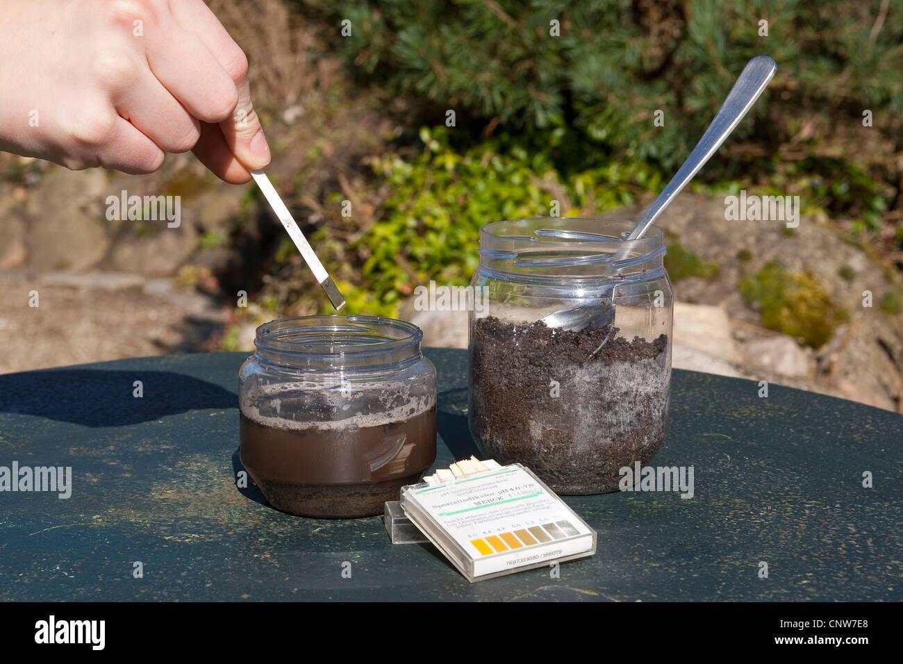 El valor de ph de una muestra de suelo ist probado con papel de tornasol, Alemania Foto de stock