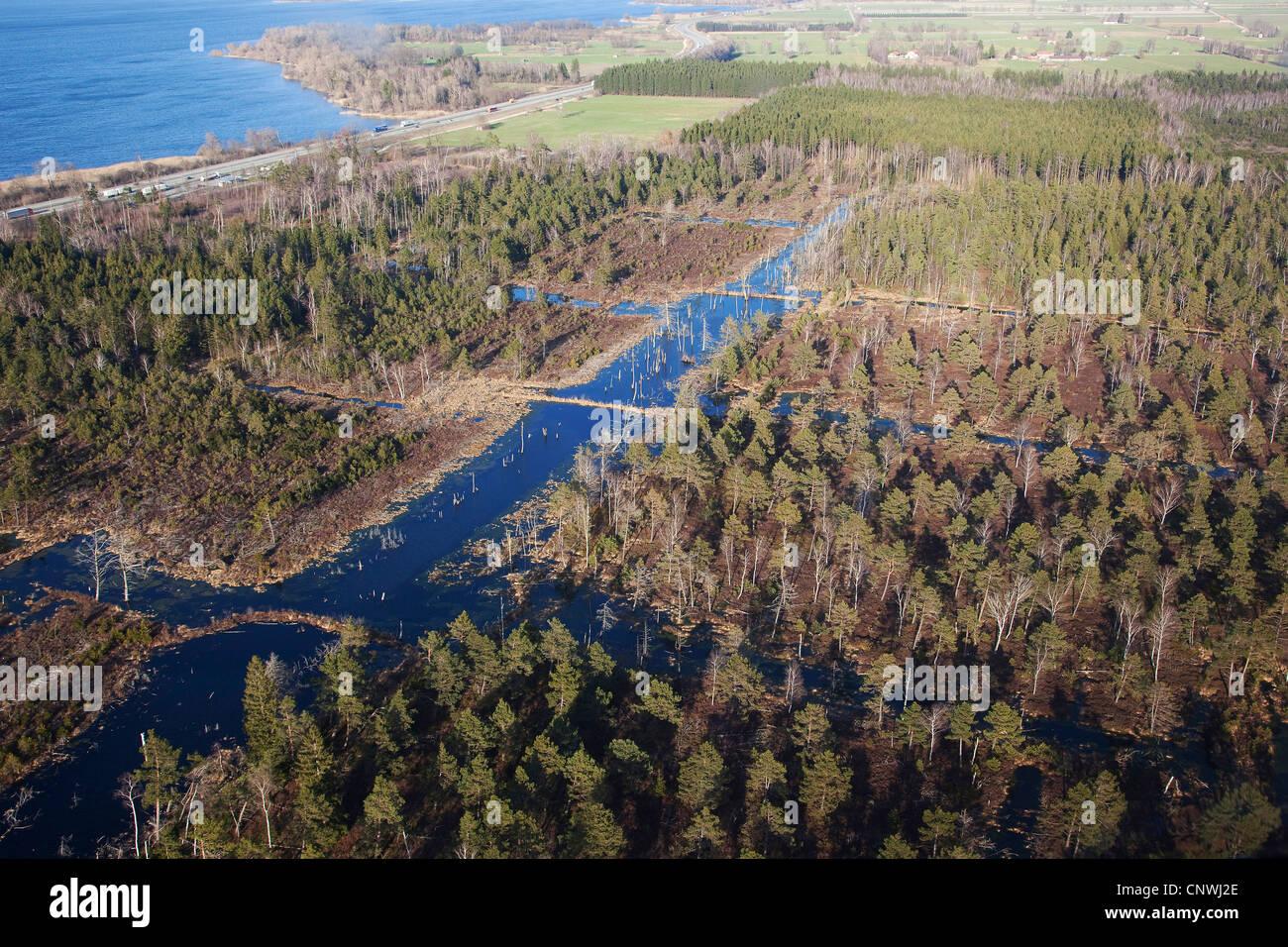 De highmoor renaturation afectados por el corte de turba, Alemania, Baviera, Chiemsee Imagen De Stock