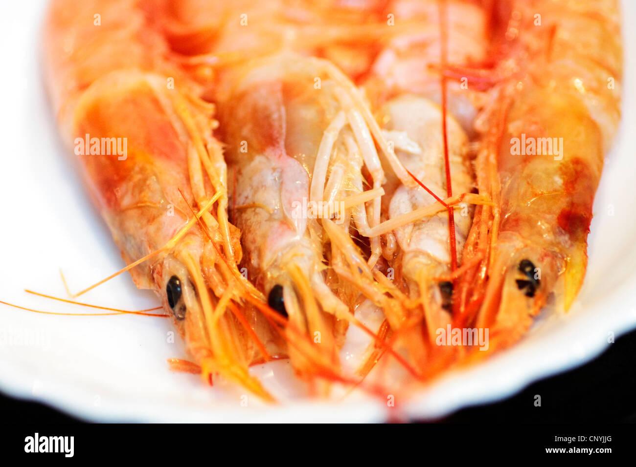 Mariscos, Comida, langostino, crustáceo, snack, cocina, naranja, fritos, preparados, ingrediente, placa, gourmet, delicioso, barbacoa, barbecu Foto de stock