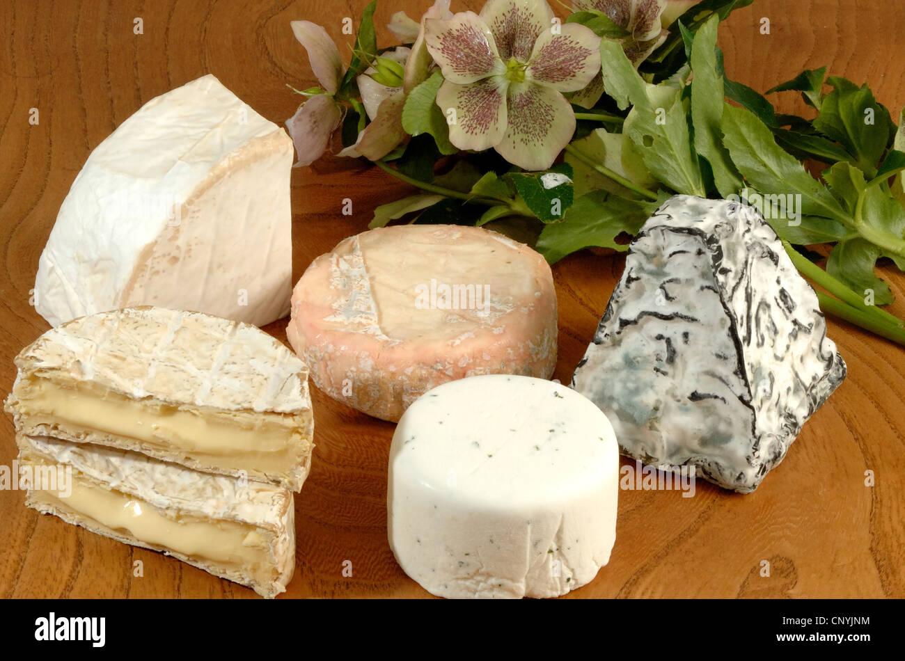 Una selección de quesos del país occidental desde el oeste de Inglaterra Imagen De Stock