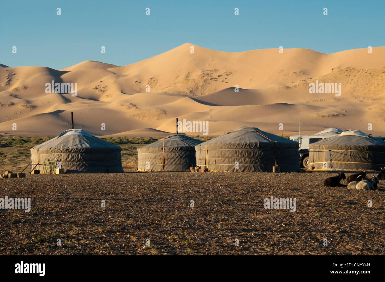 Gers nómadas en las dunas de arena de Khongoryn Els al atardecer en el desierto de Gobi de Mongolia Foto de stock