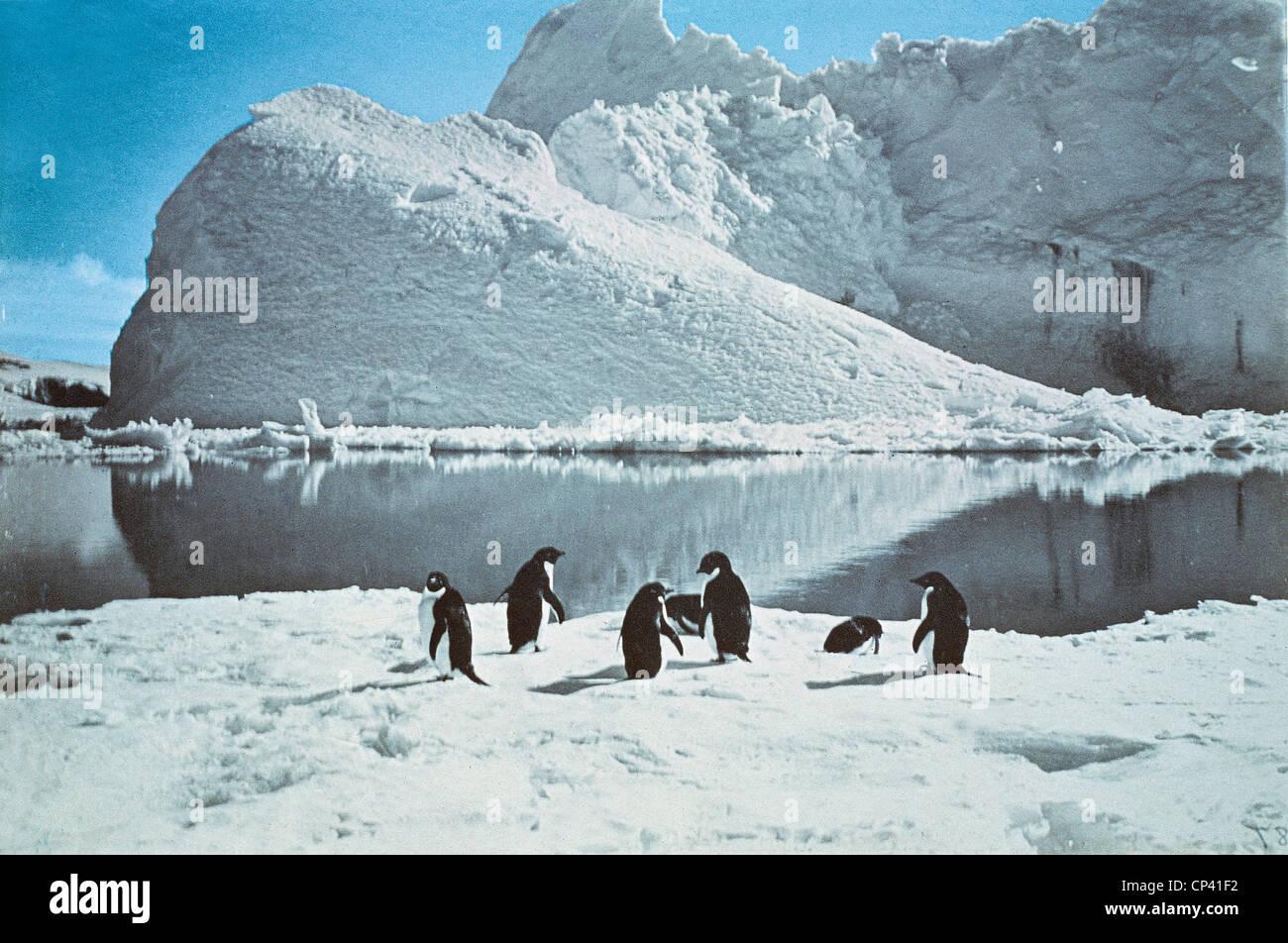 La historia de la exploración, la Antártida, siglo XX. Bahía Pinguni fotografiado por expedición Imagen De Stock