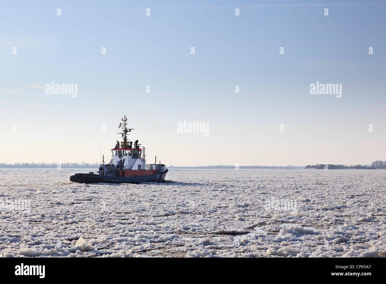 Alemania, Hamburgo, arrastrero cubiertas de hielo sobre el río Elba Foto de stock