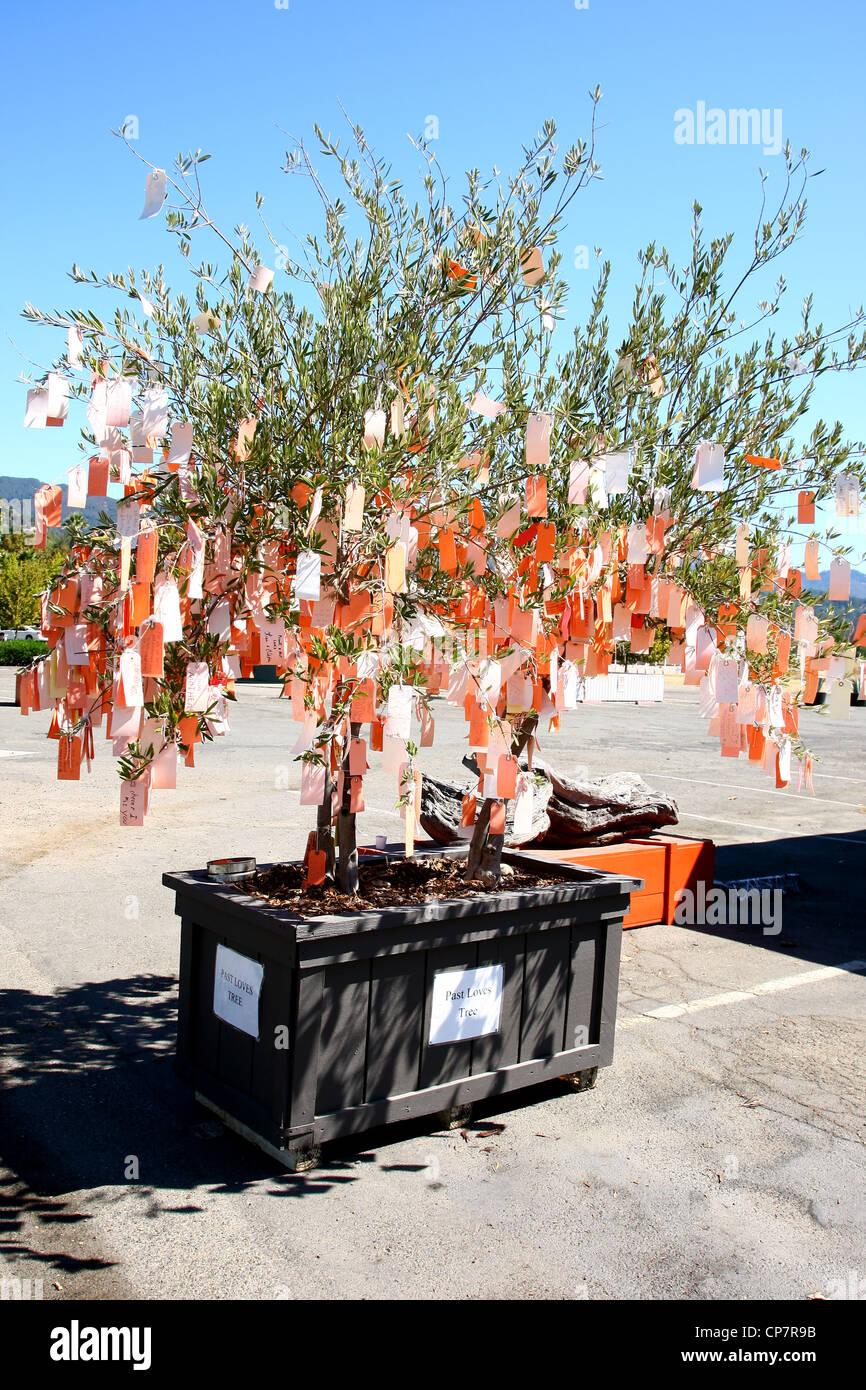 Tienda de arte CALISTOGA Valle de Napa de California 06 de octubre de 2011 EE.UU. Imagen De Stock
