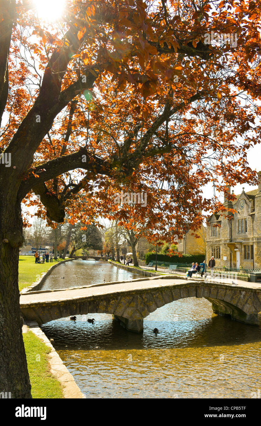 El pueblo de Bourton-on-the-agua, Gloucestershire, Inglaterra. Río Windrush. Foto de stock
