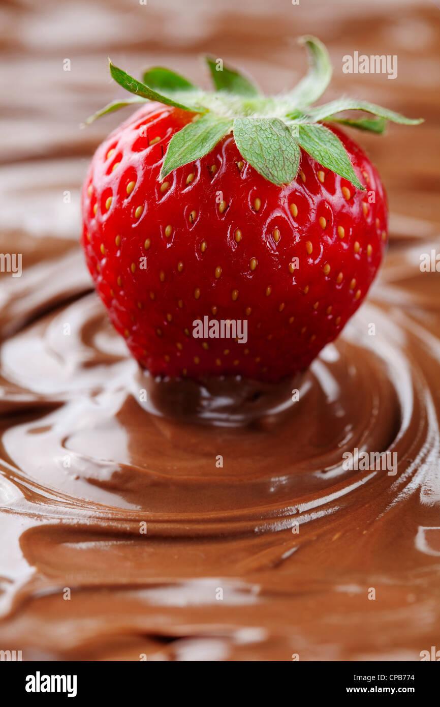 La fresa madura en chocolate liquido Imagen De Stock