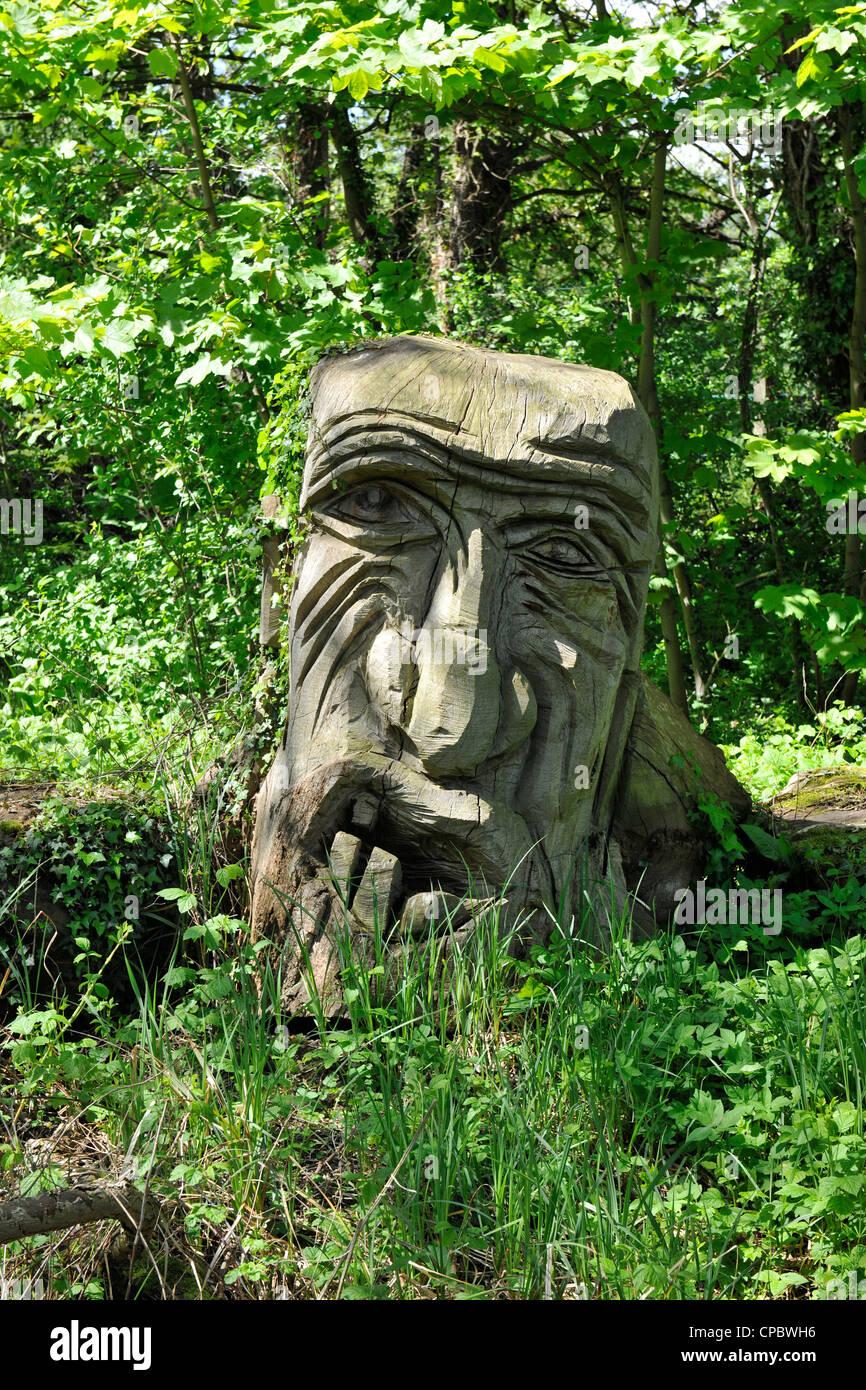 Rostro tallado en tronco de árbol en la Vista Isla, Caversham, Reading, Berkshire. Imagen De Stock