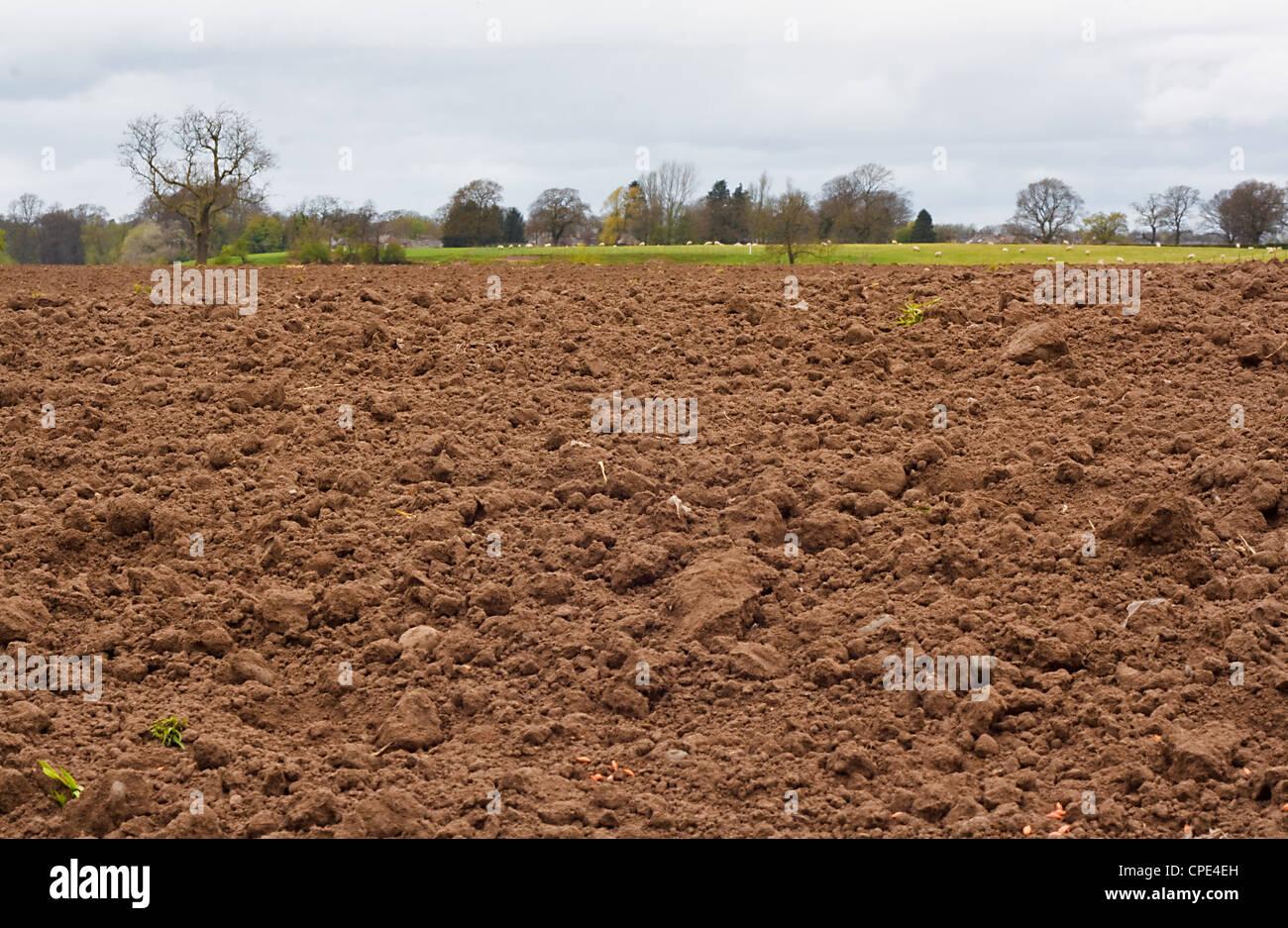 Recién excavadas y recientemente promocionados campo agrícola, buen fondo para la agricultura Imagen De Stock