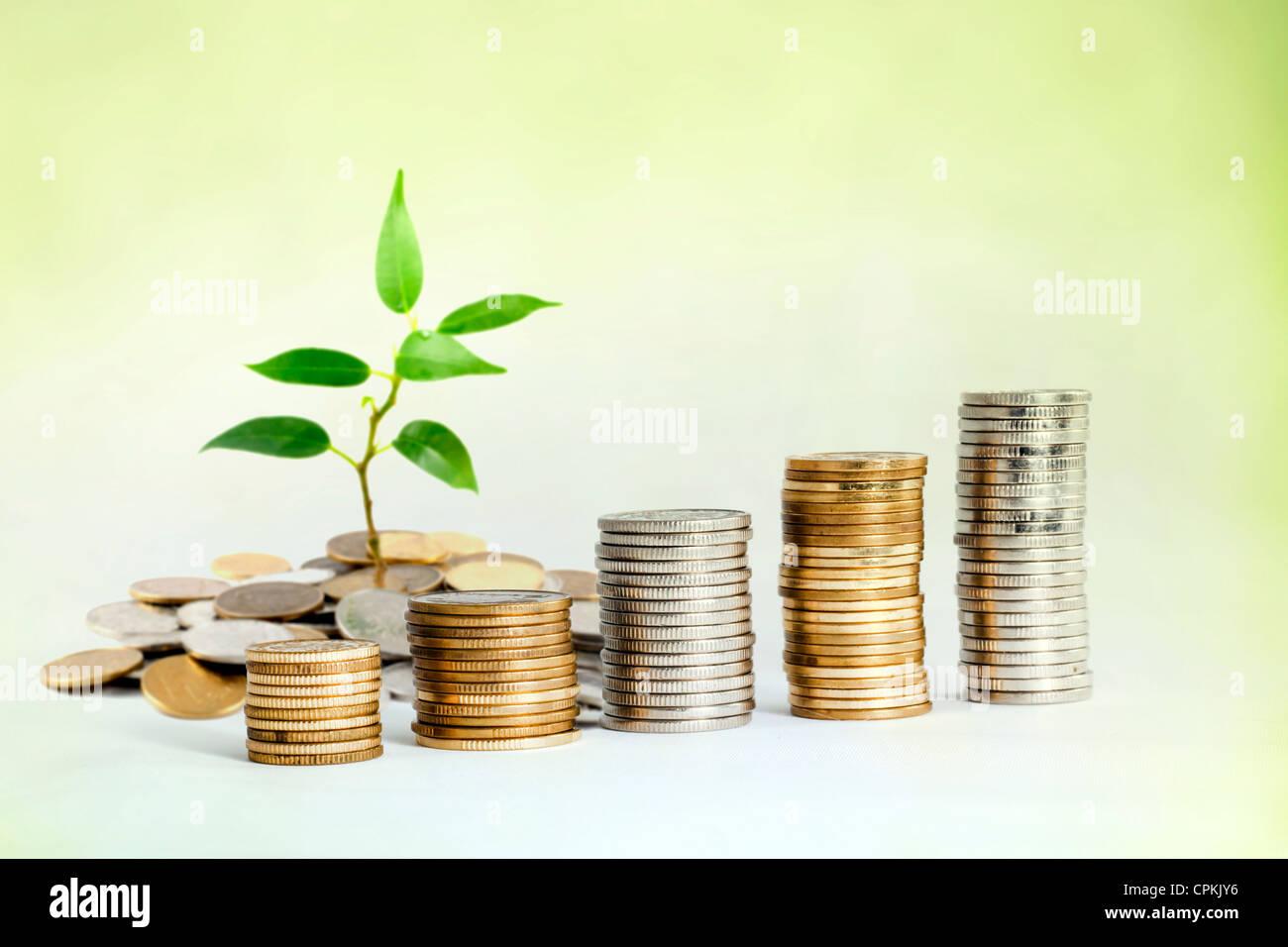 Incrementar la inversión ahorrando dinero concepto con planta y monedas Imagen De Stock