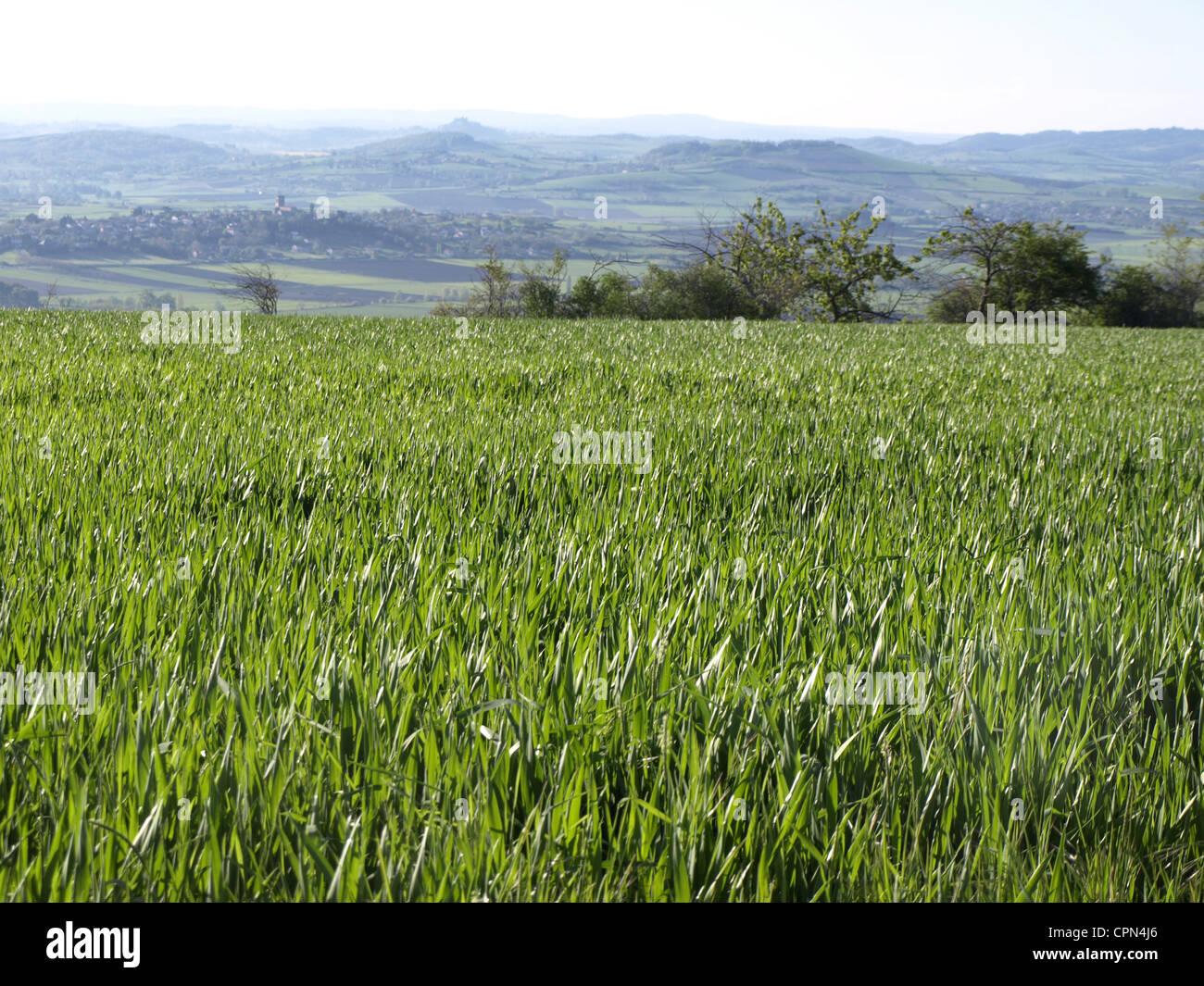 Auvernia, Francia Foto de stock