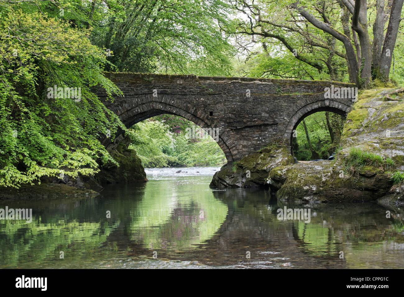 Denham Bridge, Buckland Monachorum, Devon Imagen De Stock