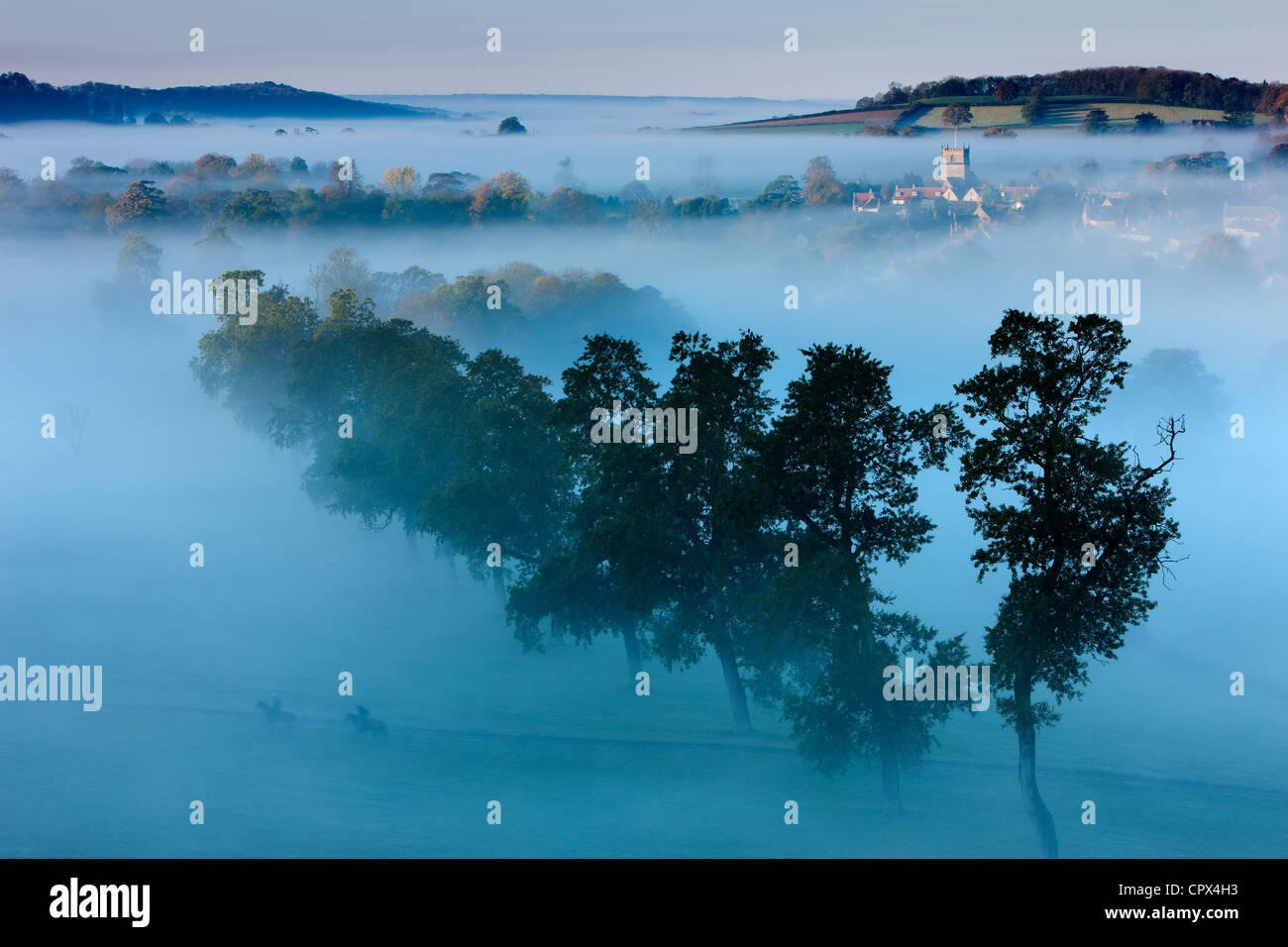 Una mañana de otoño, Misty Milborne Puerto, en el Dorset y Somerset Frontera, Inglaterra Imagen De Stock