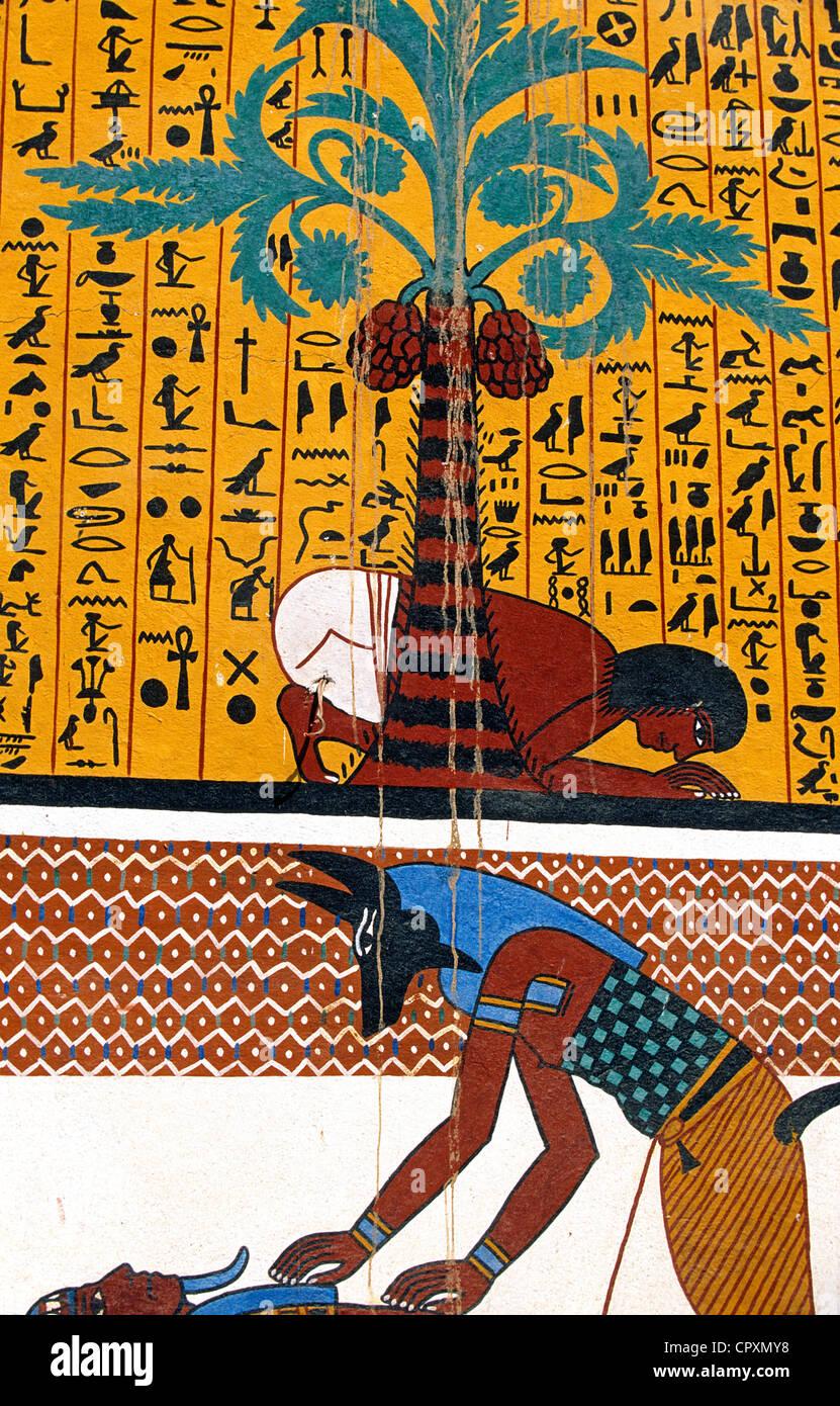 Egipto En El Alto Egipto El Valle Del Nilo Alrededores De Luxor