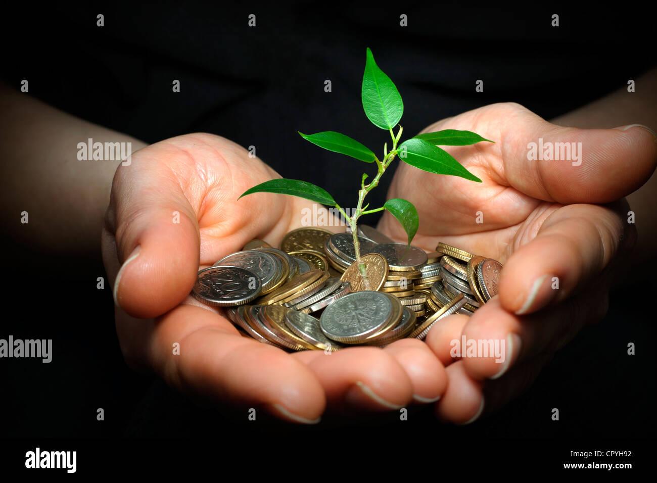 Empresario celebración planta brotando desde un puñado de monedas - buena inversión y dinero concepto Imagen De Stock