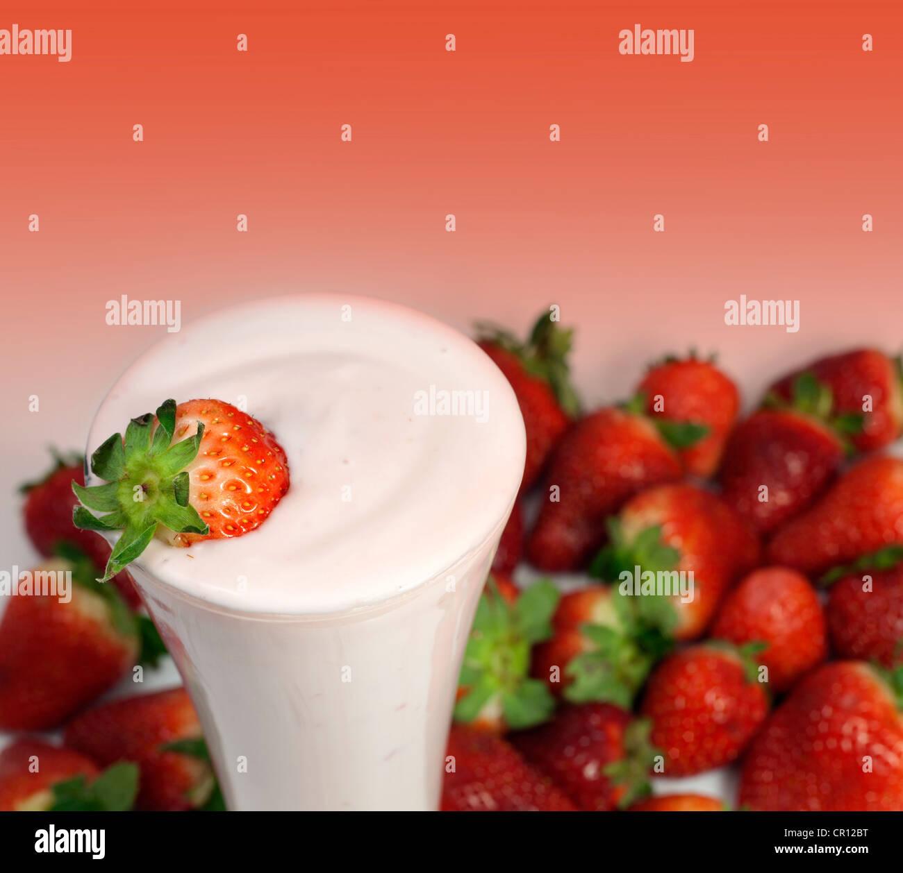 Batido de Fresa cóctel con fresas frescas Imagen De Stock