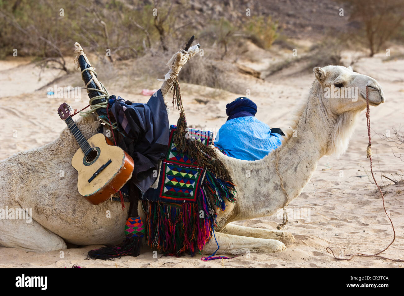 Argelia Sahara, cerca de Djanet, Tassili N'Ajjer Parque Nacional Macizo, Patrimonio Mundial de la UNESCO, hombre Imagen De Stock