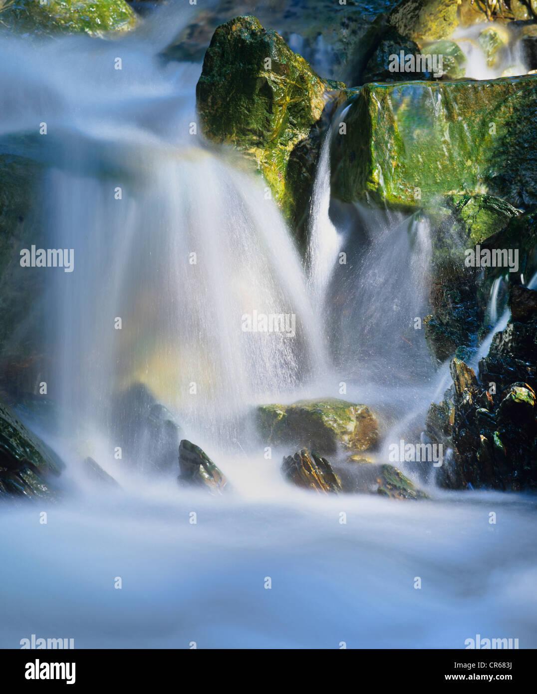 El agua que fluye sobre las rocas, una pequeña cascada, Glasbach Creek, Renania del Norte-Westfalia, Alemania, Imagen De Stock
