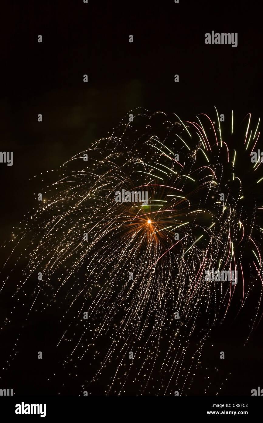 Explosión de fuegos artificiales contra el cielo nocturno Foto de stock