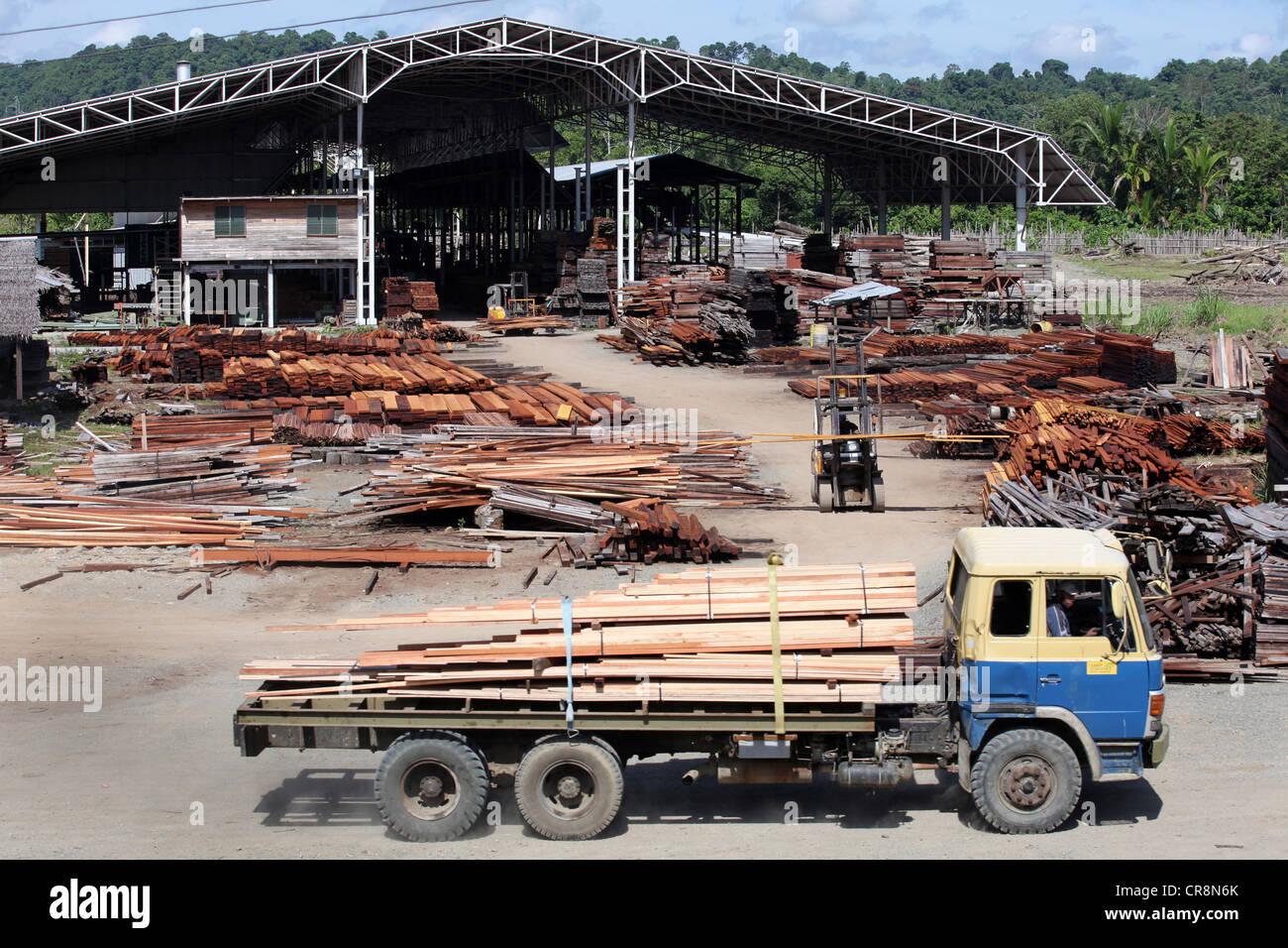 La fábrica de procesamiento de madera de aserradero, Santi Silvicultura, Madang, Papua Neuguinea Imagen De Stock