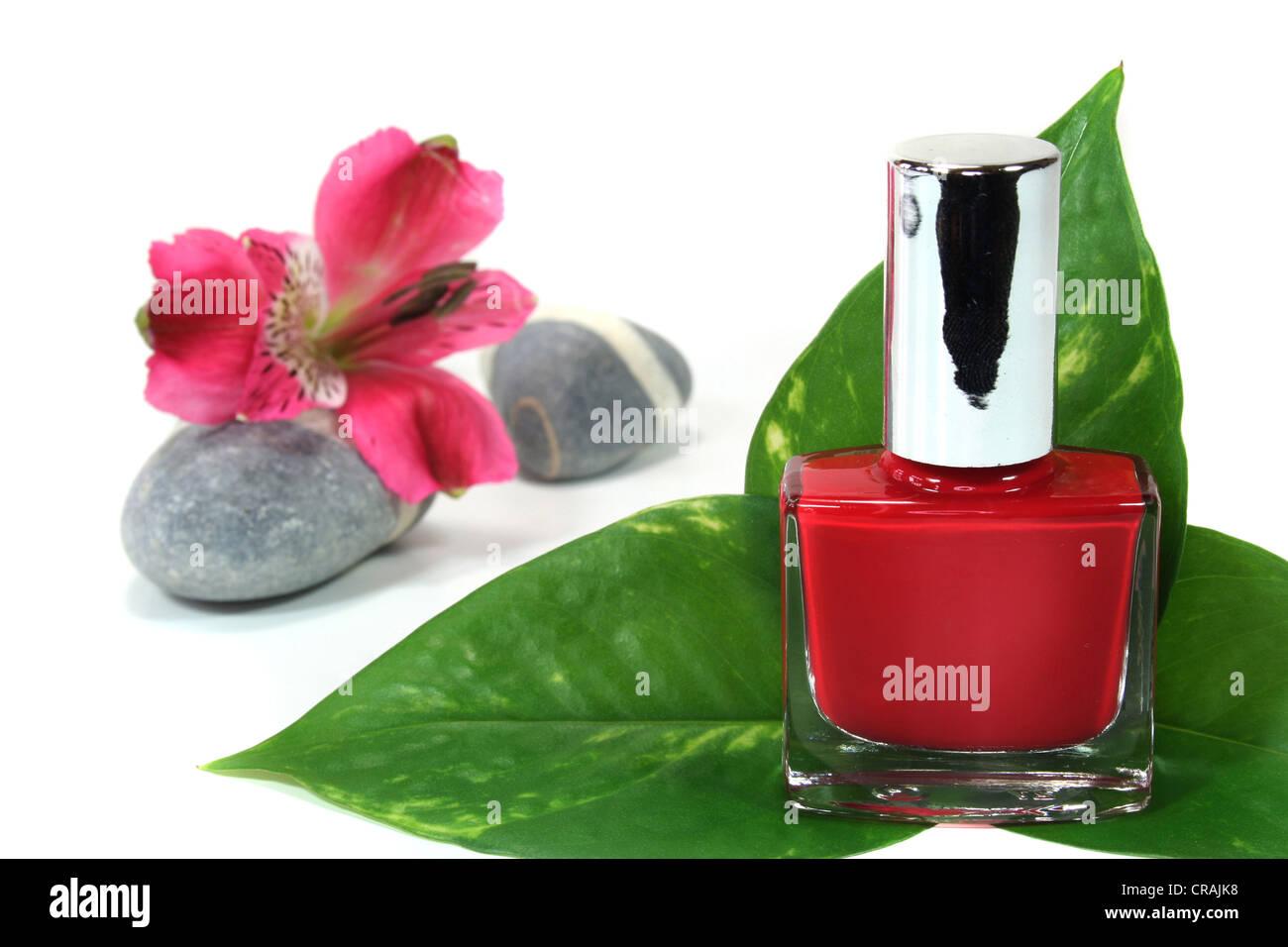 Painted Fingernails Imágenes De Stock & Painted Fingernails Fotos De ...