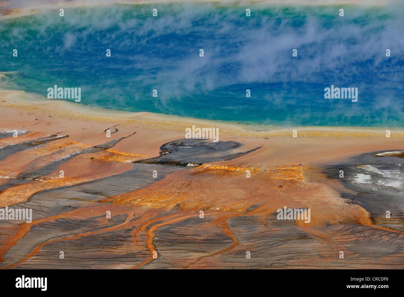 Grand Prismatic Spring, géiser, Midway Geyser Basin, coloridos bacterias termófilas, hot springs, Parque Nacional de Yellowstone. Foto de stock