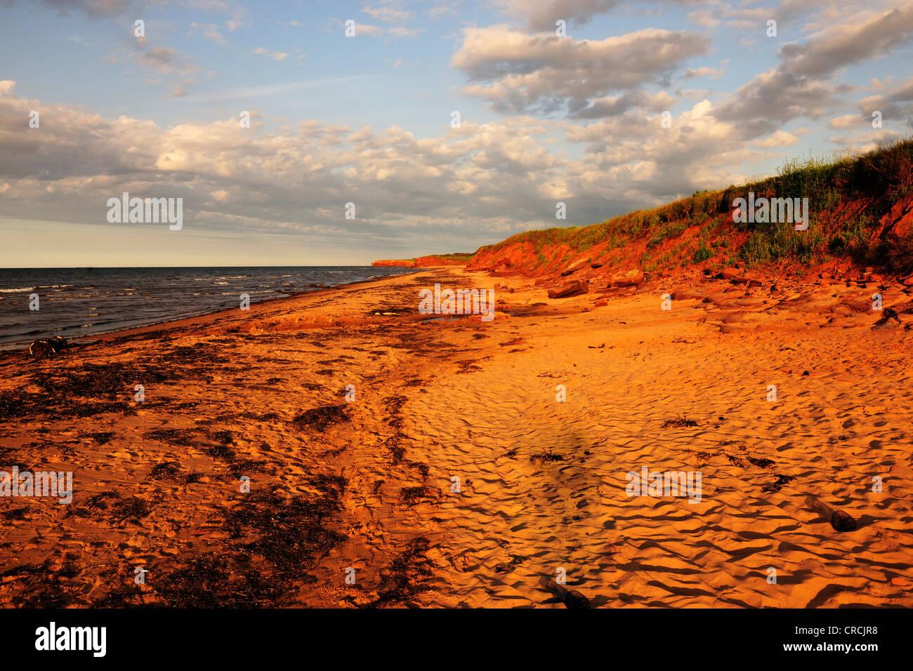 Playas y acantilados de arenisca roja, típico de la costa de Prince Edward Island National Park, Prince Edward Imagen De Stock
