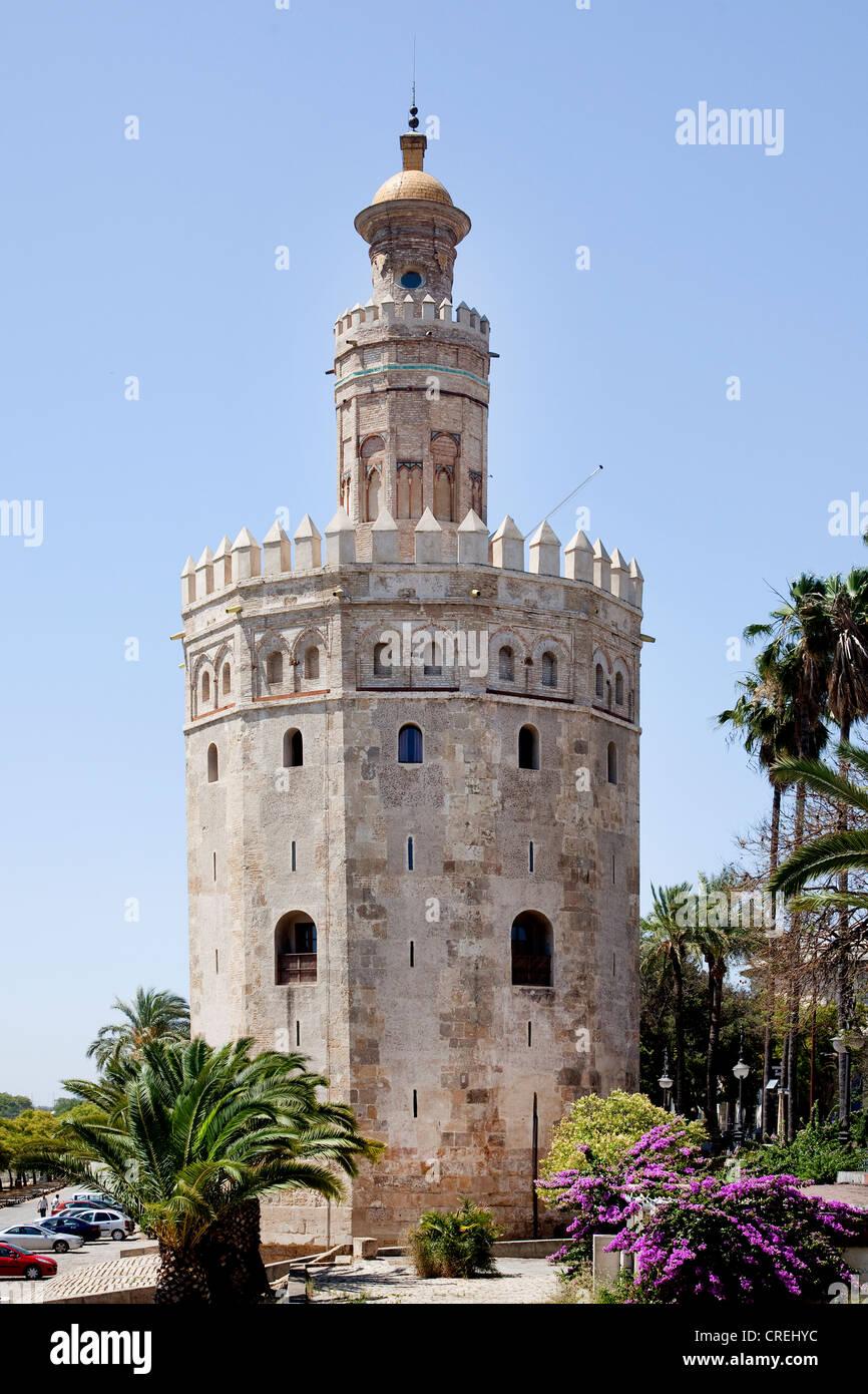 Torre del Oro, la Torre del Oro, una vez que parte de la fortaleza árabe, Sevilla, Andalucía, España, Imagen De Stock