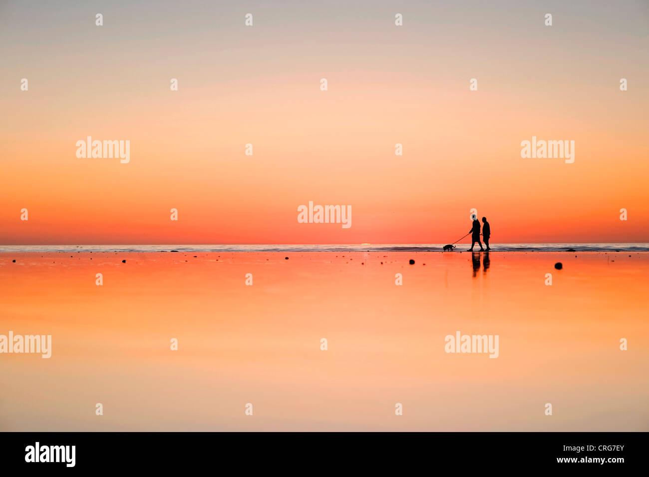 Siluetas de figuras caminar a su perro en la arena mojada al lado del océano al atardecer. Imagen De Stock