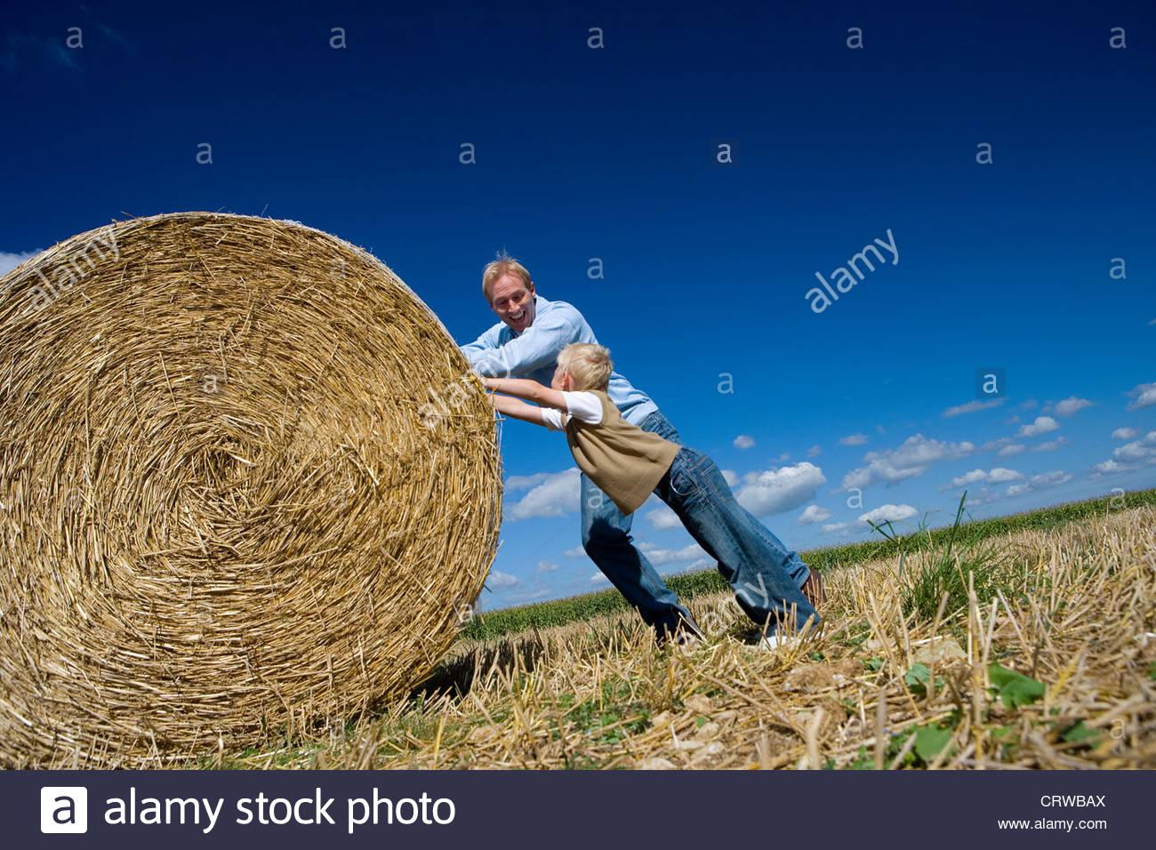 El padre y el hijo (7-9) empuja el fardo de heno en el campo (inclinación) Imagen De Stock
