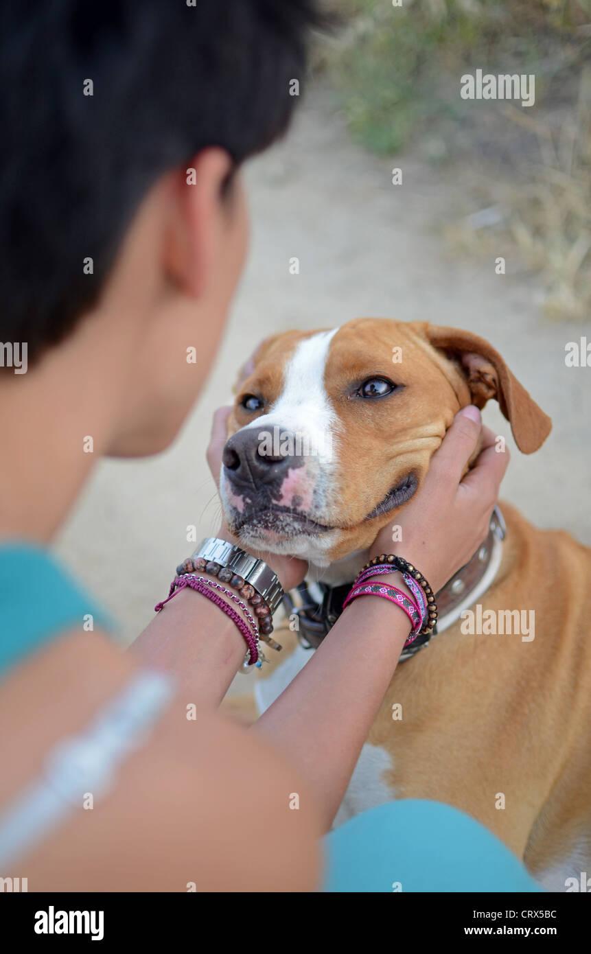 Mujer joven acariciando su cabeza de perros Foto de stock