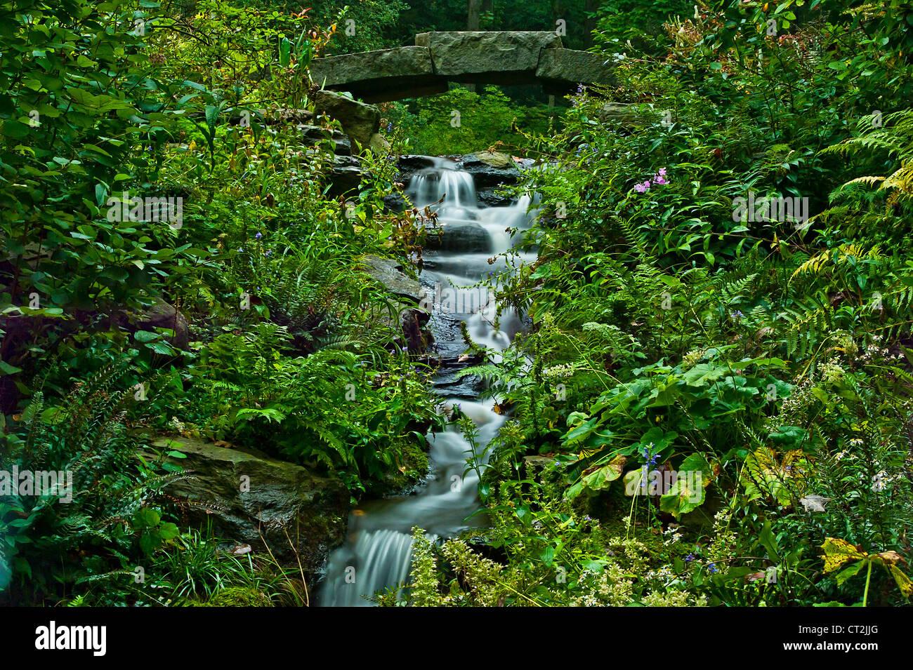 Arroyo serpenteante suavemente, Delaware, EE.UU. Imagen De Stock
