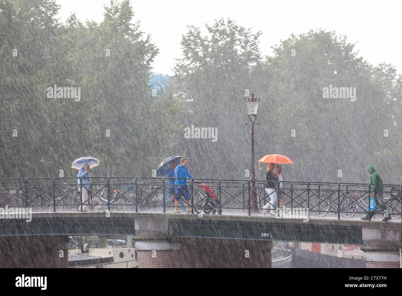Puente de Amsterdam. Lluvias torrenciales repentinas de verano. La gente en un puente con sombrillas. Uno local Imagen De Stock