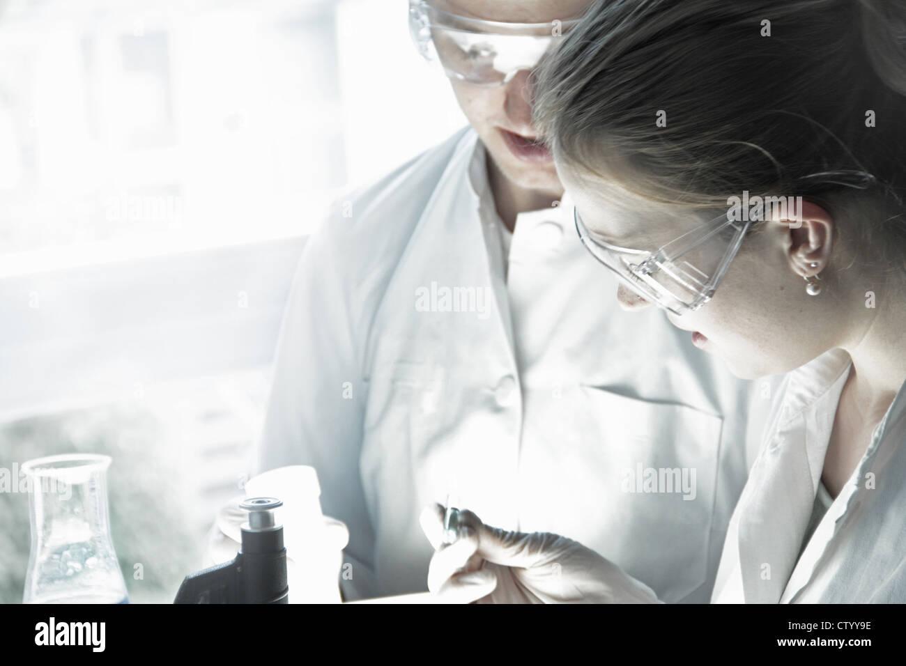 Científicos examinan el tubo de ensayo en laboratorio Imagen De Stock