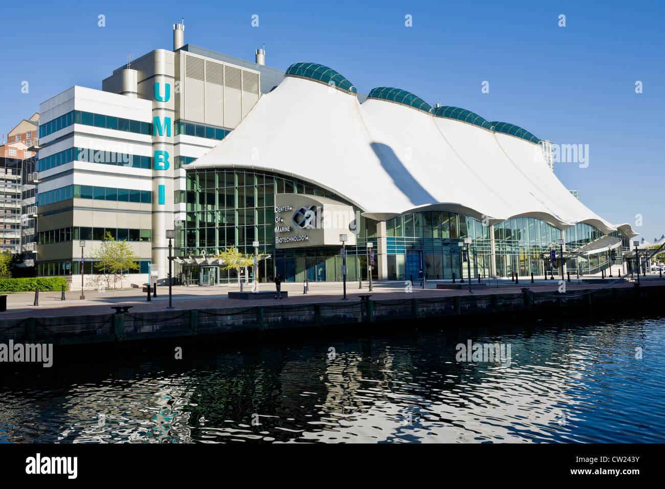 Colón, Centro de Biotecnología Marina, Baltimore, Maryland Imagen De Stock