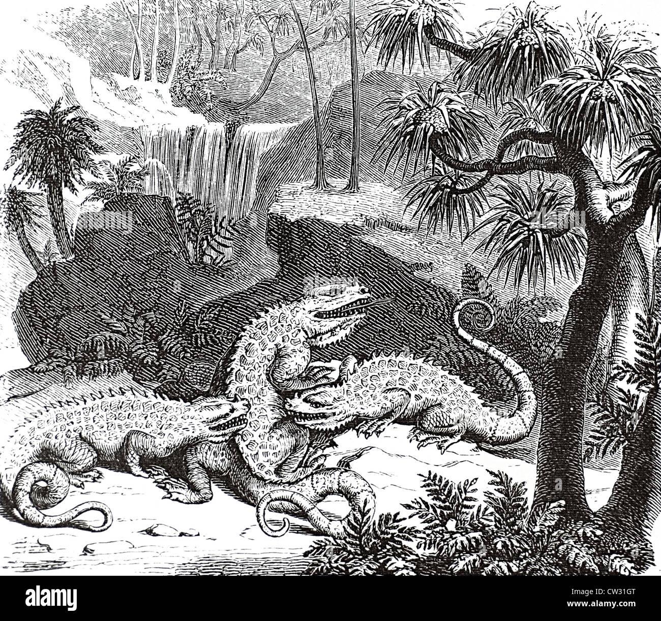 Iguanodontia Foto de stock