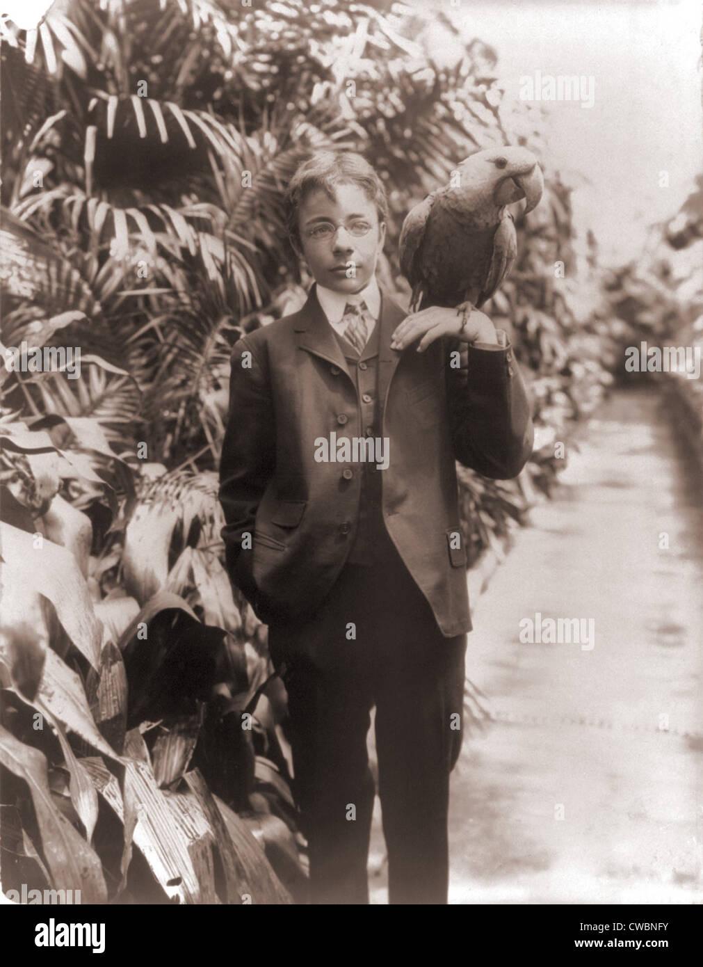 Theodore Roosevelt, Jr., con un guacamayo azul, llamado Eli Yale. 1902 Fotografía por Frances Benjamin Johnston. Imagen De Stock