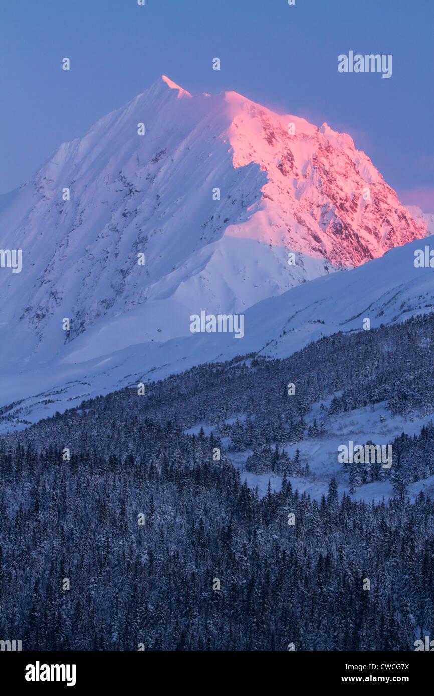 Bosque Nacional Chugach, Alaska. Imagen De Stock