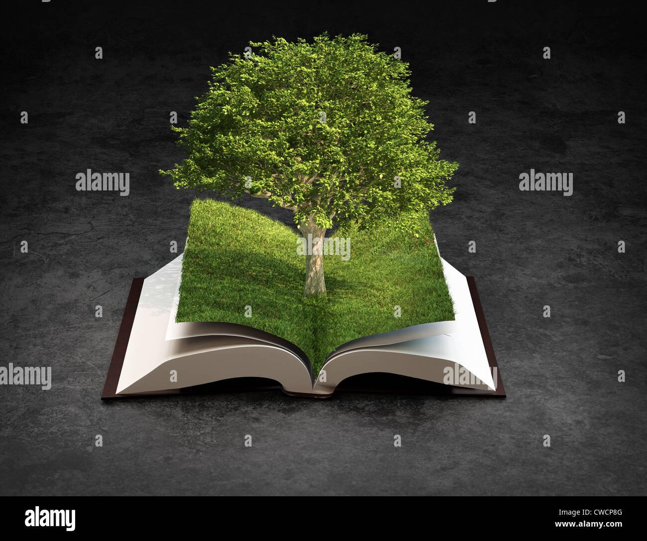 Libro Abierto - conocimiento y creatividad concepto Imagen De Stock