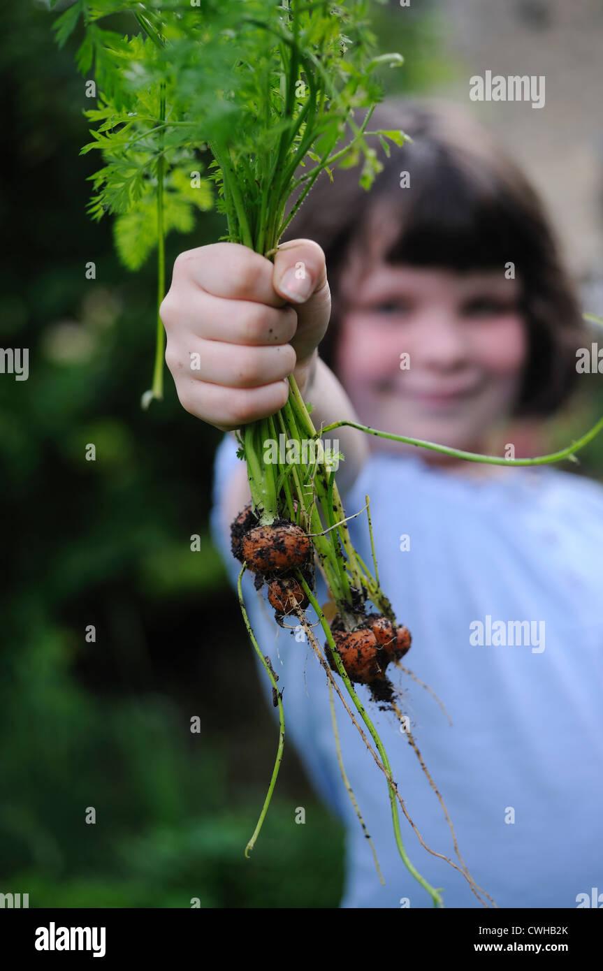 Casa cultiva las zanahorias y el niño Imagen De Stock