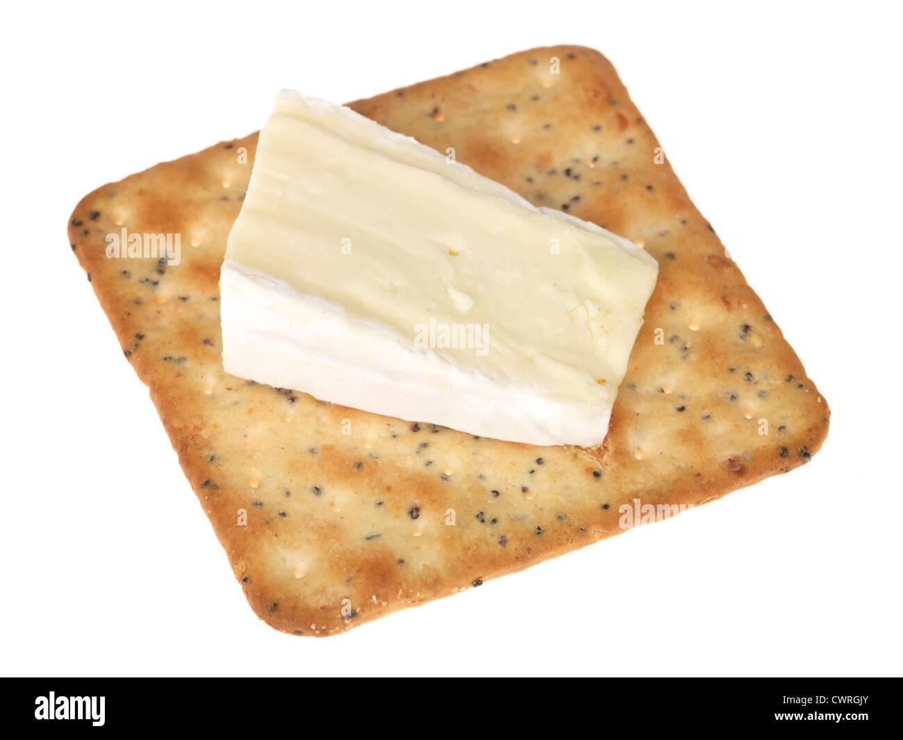Brie con un cracker Imagen De Stock