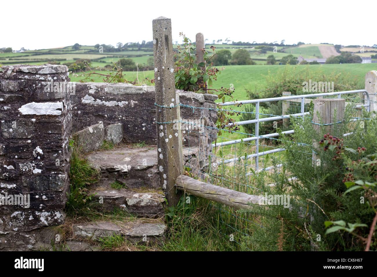 Camino a neolítico Ballynoe Stone Circle, la Península Lecale, Condado de Down, Irlanda del Norte Foto de stock